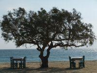 Naxos_Amorgos_2010_41